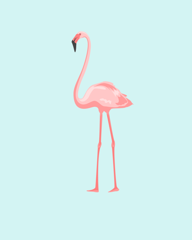 94ec0-ohsolovely-flamingos-01