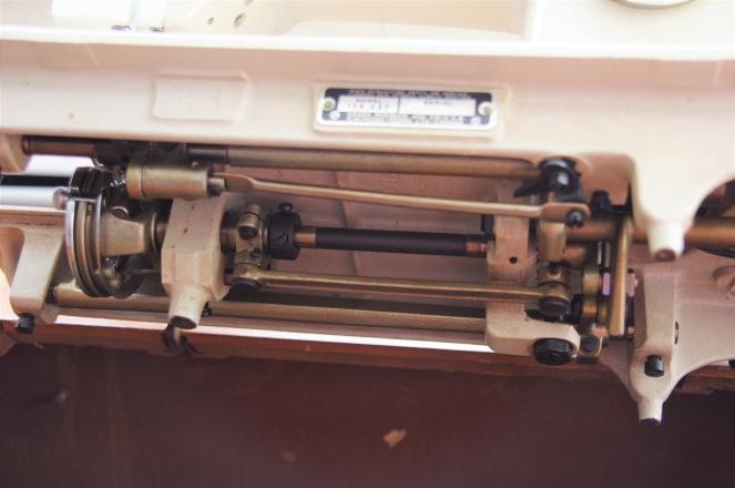 IMGP1976